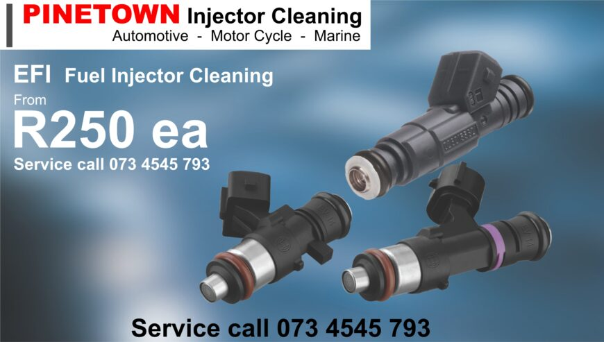 1Small-EFI-Injector-Service-073-4545-793